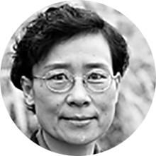 Prof. Dr. YuNing Wu
